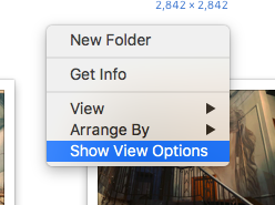 Screenshot of a Finder window settings menu, with 'Show View Options' highlighted.